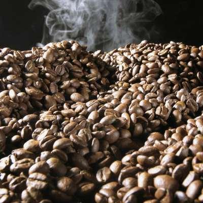 Frischer Kaffee, Frische Kaffeebohnen, Kaffee trinken